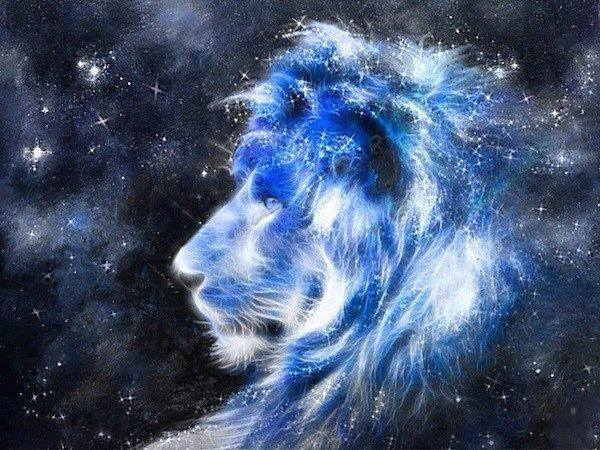 """I was dead, then alive. Weeping, then laughing.  The power of love came into me, and I became fierce like a lion, then tender like the evening star.""   ~ Rumi"