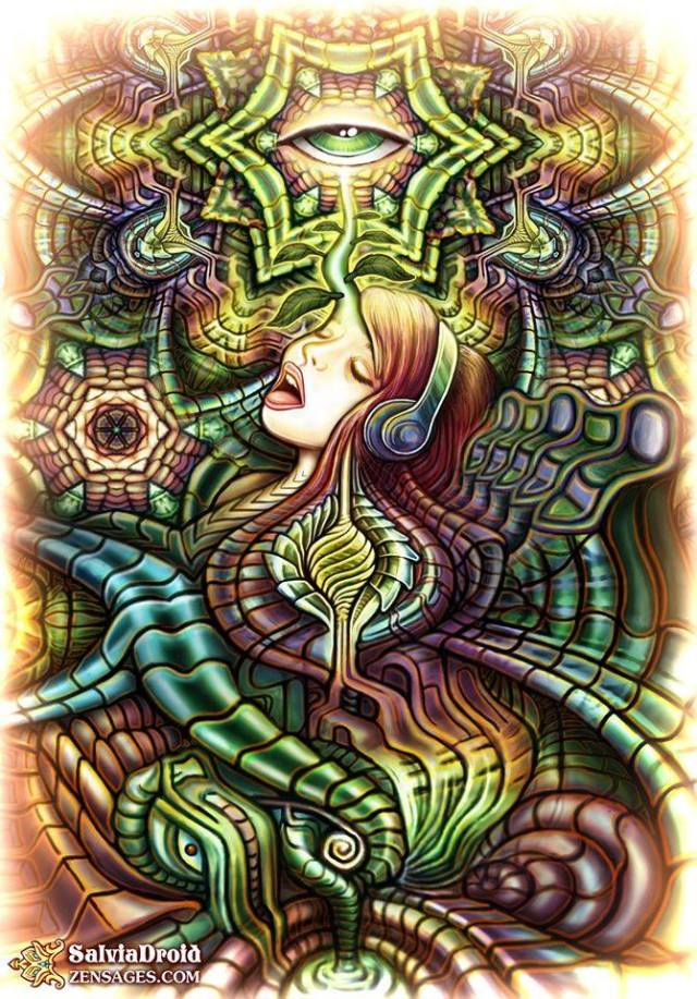 Art by Salvia Droid