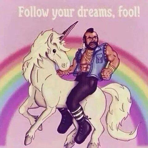 Follow your dreams fool