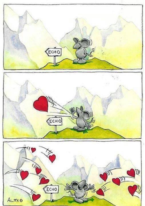 love echo