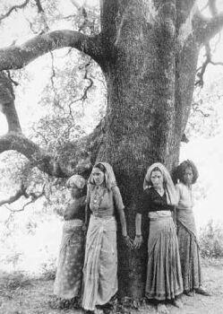women trees